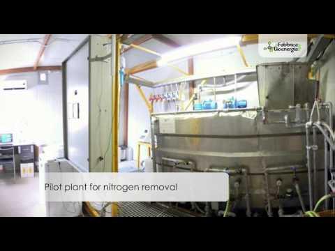 Bioenergy Factory - Presentation