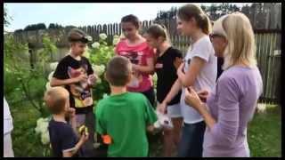 видео Квест для детей своими руками