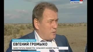 Завод по производству томатной пасты открылся в Астраханской области