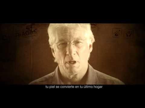 RAIS Fundación - Piel de Cartón #personasdecartón