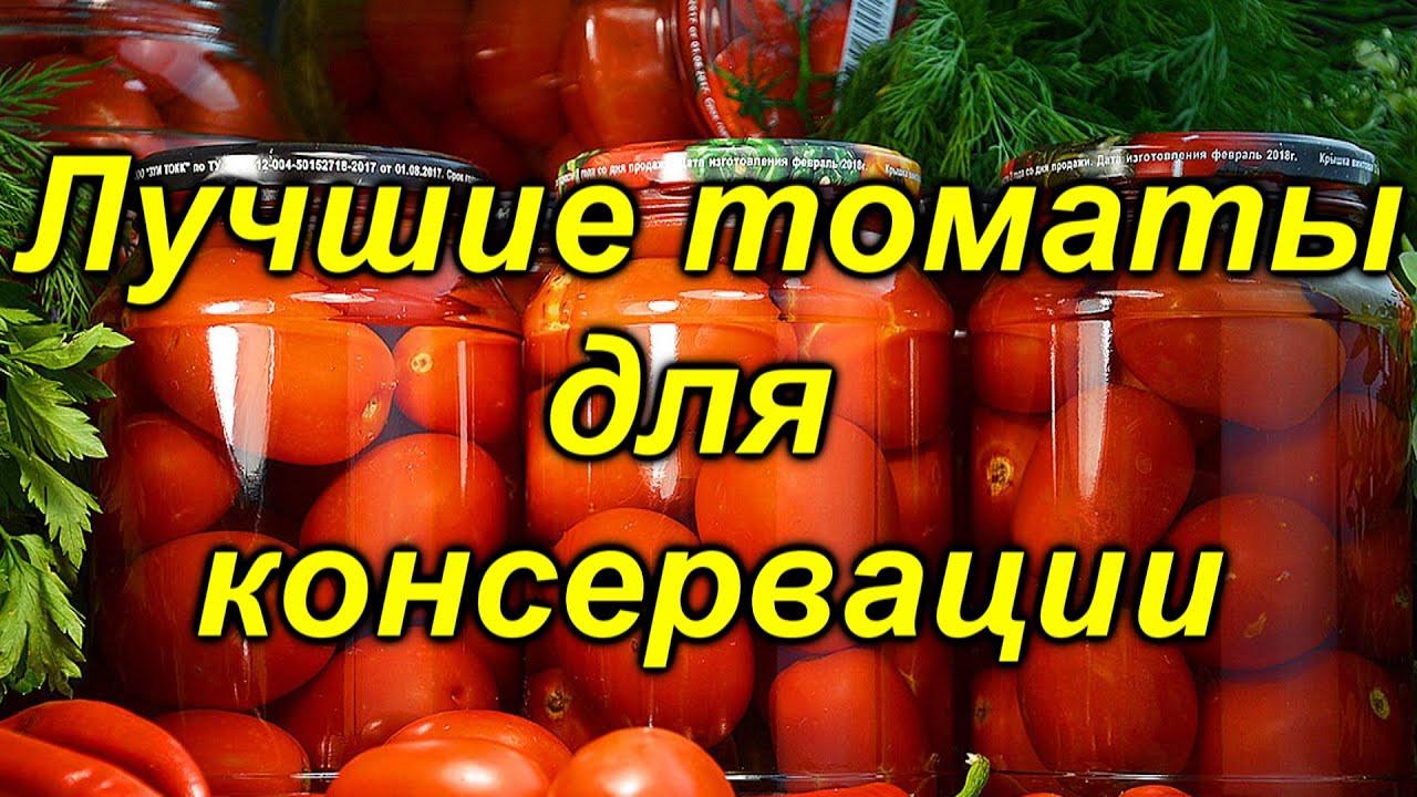 """5 лучших сортов томатов для """"баночки"""" на консервацию!"""