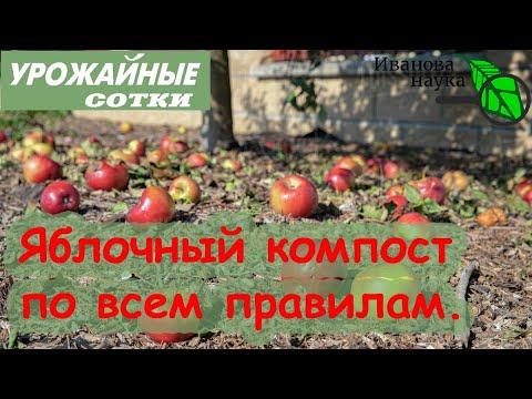 Куда девать опад яблок, груш и прочих фруктов С ПОЛЬЗОЙ?