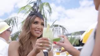 Popular Videos - Melbourne Cup Carnival & 2018 Melbourne Cup