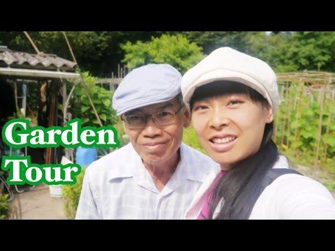 [Garden Tour] Dans le potager de mon père [Jardins familiaux] Agriculture biologique en ville