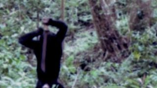 Creepy footage: Wild monkey seen carrying a large knife in Uganda forest