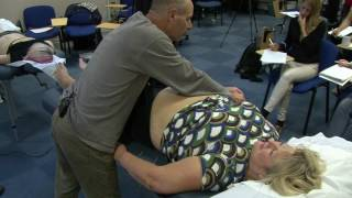 York Oct 2015 Clinical Day IV - Treating Sacral Pain, Macular Degeneration, Knee & Shoulder Pain