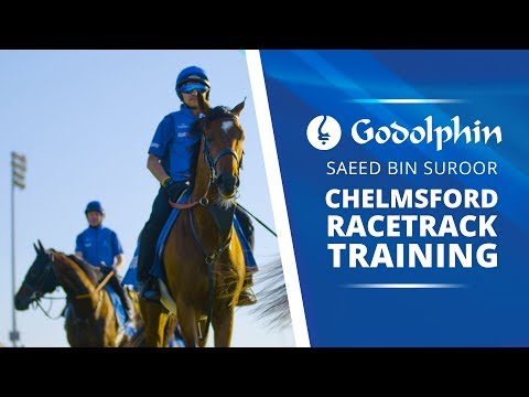 Saeed bin Suroor's Derby hopes training at Chelmsford racecourse