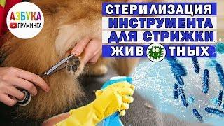 Обработка инструментов для стрижки животных