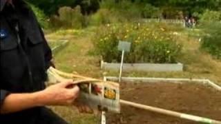 Basic Gardening Tips : How to Prepare Garden Beds