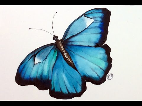 Watercolor Butterfly REAL TIME Painting Demonstration