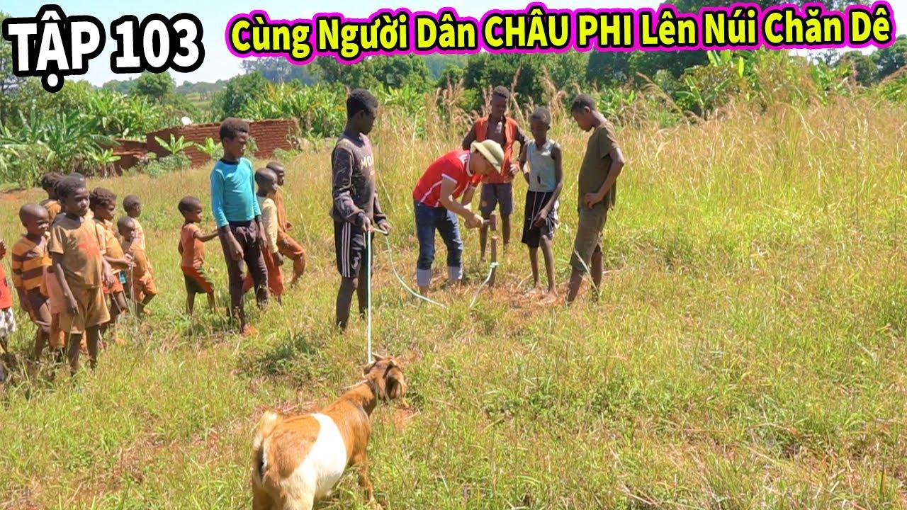 Chăn Nuôi VIỆT NAM ở Châu Phi || Các Em Nhỏ Tỏ Ra Hào Hứng Khi Được Hùng KaKa Đưa Lên Núi Đi Chăn Dê