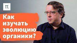 Космические фуллерены — Дмитрий Вибе / ПостНаука