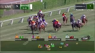 Vidéo de la course PMU PREMIO GO POKER HANDICAP