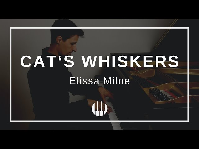 Cat's Whiskers by Elissa Milne