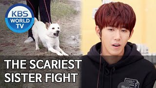 The scariest sister fight [Dogs are incredible/ENG/2020.05.27]