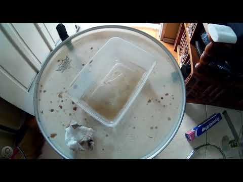 snare drum cleaning - removing rust from chrome