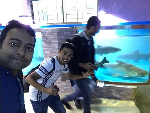 Radiant Fish World, জীবিত সামুদ্রিক মাছ এর Aquarium, First Time in Bangladesh at Cox's Bazar.