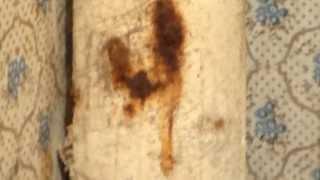 Канализационная  труба в Хрущёвке...(ЖЕК № 1 Херсон ул. Фрунзе, 24. https://www.youtube.com/watch?v=2lbYOJWmhw4 Хрущевка, канализация, электропроводка, .... https://www.youtube.co..., 2013-10-28T16:10:50.000Z)