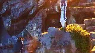 Murió Grape kun, el pinguino que se enamoró de una caricatura