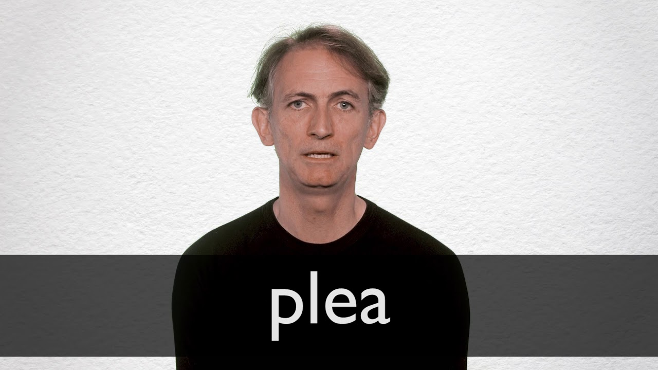 How to pronounce PLEA in British English