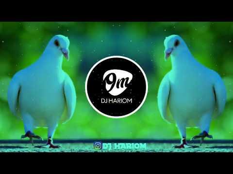 KABUTAR JA JA - DJ VRV || DJ HARIOM ||