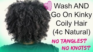 How To do a DEFINED Wash and Go on 4c Hair (No Tangles, No Knots, Best Method)