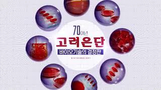 고려은단 알티지 레드 오메가3 맥스