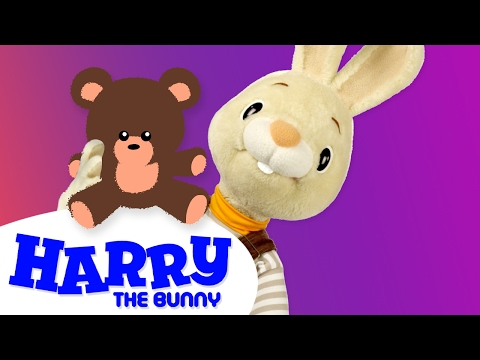 Learning Vocabulary - Harry's Teddy Bear! | Learning New Words with Toys for Kids | Harry the Bunny