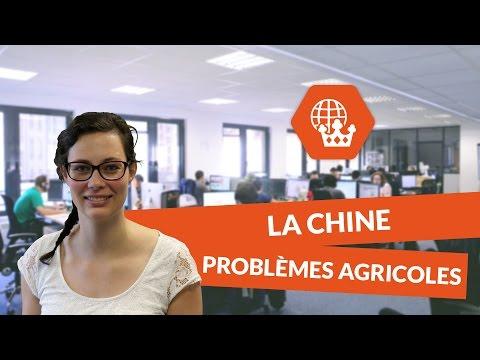 La Chine : de nouveaux problèmes agricoles - Histoire géographie - digiSchool