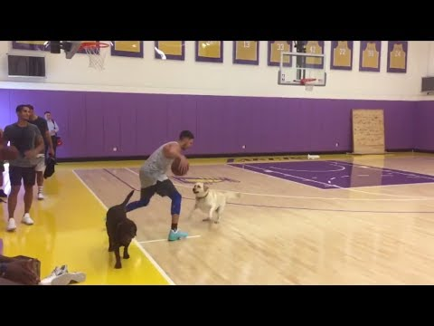 Klay Thompson challenges dog to one-on-one game | ESPN