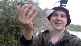 РЫБАЛКА на ФИДЕР на РЕКЕ Ловля окуня на живца Рыбалка на реке 2021