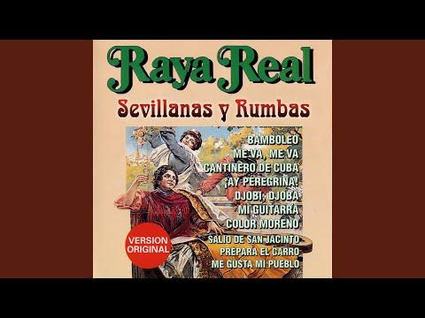 Sevillanas: Perdónala / La Historia de una Amapola
