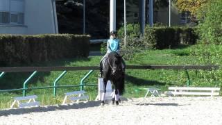 Ангелина+Бомонд.Тренируем плечо внутрь