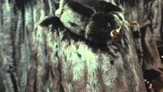 Купить норковую шубу авто леди дешевые шубы(Красивая шубка женская, автоледи размер 50, 52, 54. Норка черного цвета, скандинавская, новая коллекция $730 -..., 2015-10-26T19:46:31.000Z)