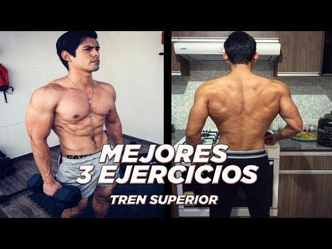 3 EJERCICIOS CLAVE PARA EL TORSO!!