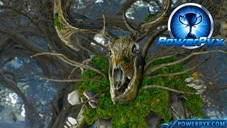 The Witcher 3 Wild Hunt - Woodland Spirit Trophy / Achievement Guide (In the Heart of the Woods)