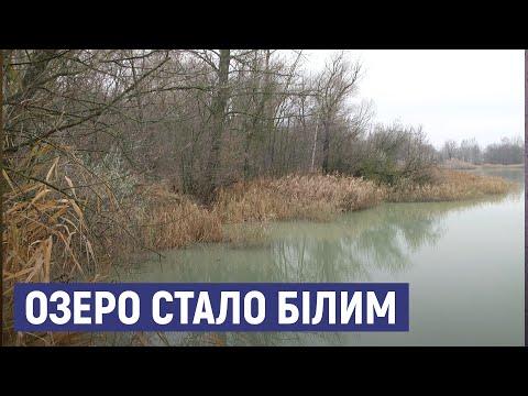 Суспільне Суми: В озерах урочища Олдиш можуть бути заховані стічні труби для промислових відходів - екоінспекція