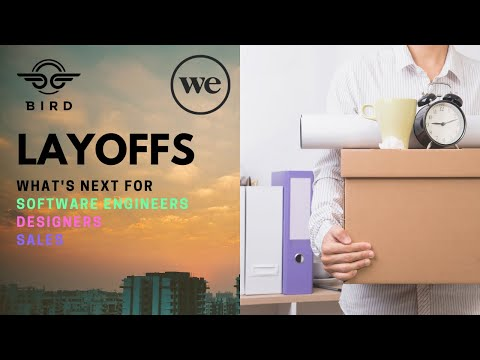 Software Engineer HUGE  Layoffs - What's Next?