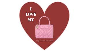 Saiba como conservar melhor as suas bolsas ( participação RIC Record) Thumbnail