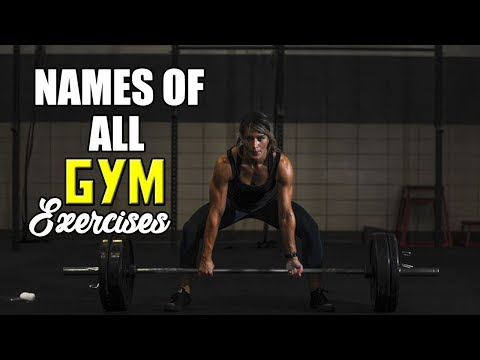 Names Of All Gym Exercises   सारी जि्म एक्सरसाइजेज के नाम   Amit Sharma