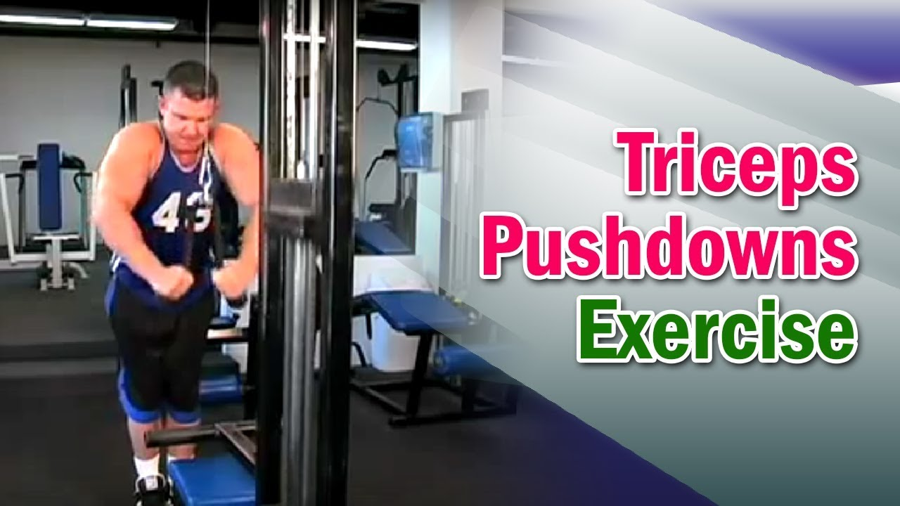 Weight Training - Triceps Pushdowns - Dr. Nick Evans - YouTube