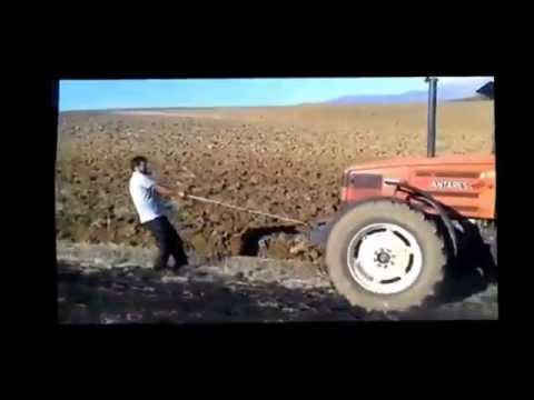 Man power pulling tractor plowing in field. Funny
