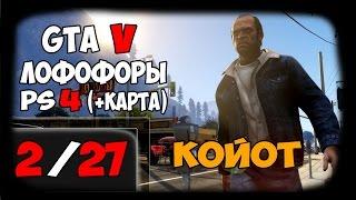 GTA 5 - ЛОФОФОРЫ - КОЙОТ (+Карта)[2/27] PS4