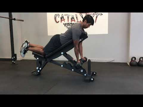 Dumbbell Supinated Chest Supported Rows