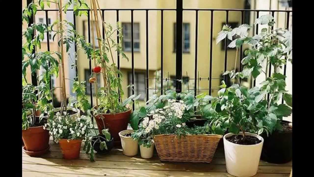 Garden Ideas apartment patio garden YouTube