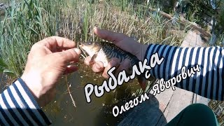 Рибалка в очереті на мормишку.