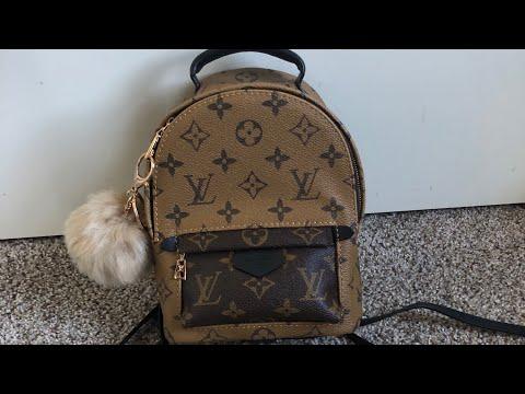 Replica Louis Vuitton mini Palm springs back pack - Action.News ABC ... c3e842b310