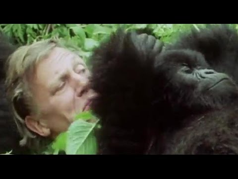 Your Favourite Sir David Attenborough Moments! #AttenboroughWeek - BBC Earth