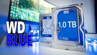 Why are WD Blue HDD's so popular? Western Digital Blue 1TB Review