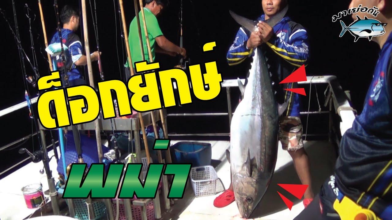 ตกปลาพม่า ด็อกใหญ่ ด็อกยักษ์ ด็อกไม่พัก ด็อกยักษ์ ด็อกใหญ่ (Big Dogtooth TUNA)